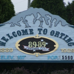 Orting WA Homes for Sale