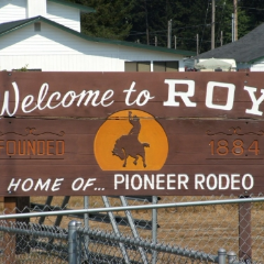Roy WA Homes for Sale