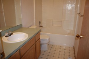 House bathroom1